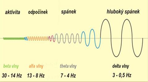 Mozkové vlny